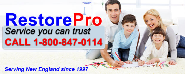 RestorePro Water Damage Experts