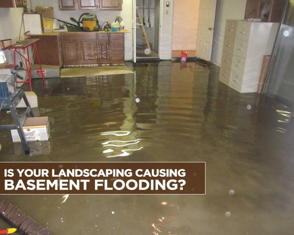 IS YOUR LANDSCAPING CAUSING BASEMENT FLOODING?