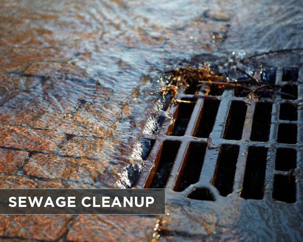 sewage-cleanup
