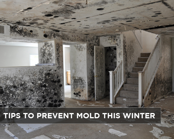 tips-to-prevent-mold-this-winter