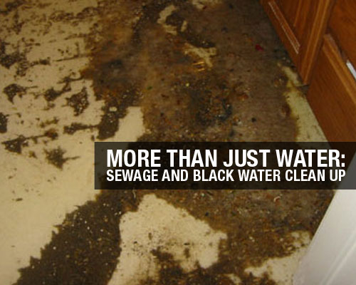 More-Than-Just-Water-Sewage-and-Black-Water-Clean-Up