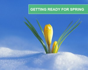 Getting-Ready-For-Spring