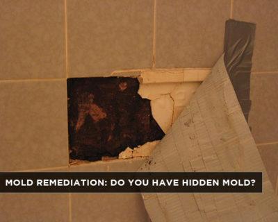 Mold Remediation Do You Have Hidden Mold