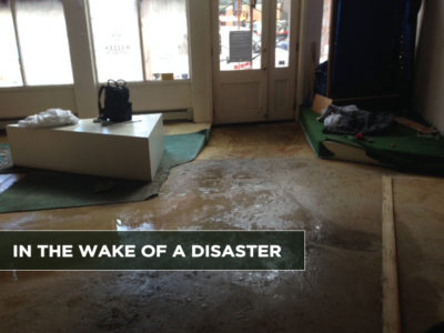 In-the-Wake-of-a-Disaster-2