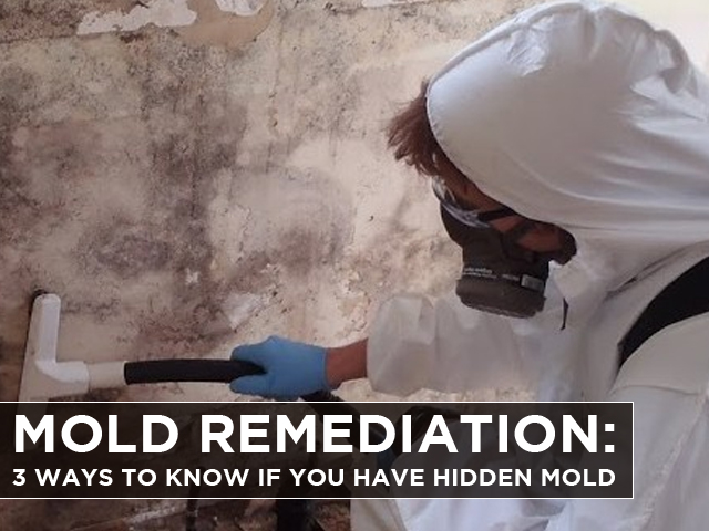 Mold-Remediation-3-Ways-to-know-if-you-have-Hidden-Mold