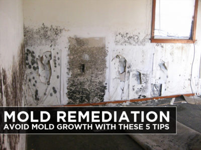 Mold-Remediation-Avoid-Mold-Growth-with-these-5-Tips-2