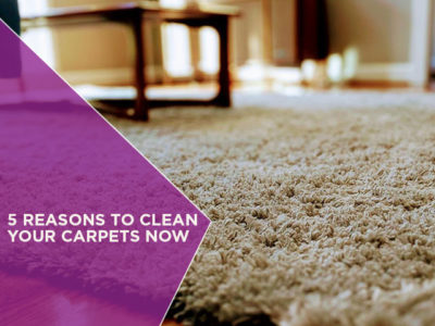5 Reasons to Clean Your Carpets Now
