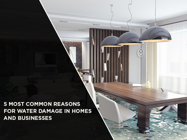 5 Most Common Reasons For Water Damage In Homes And Businesses