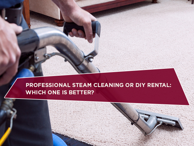 Professional Steam Cleaning Or DIY Rental: Which One Is Better?