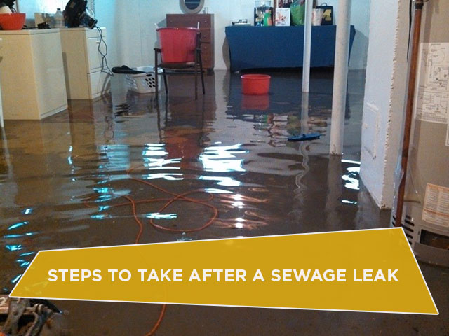 Steps to Take After a Sewage Leak