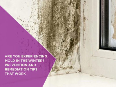 Are You Experiencing Mold In The Winter? Prevention And Remediation Tips That Work