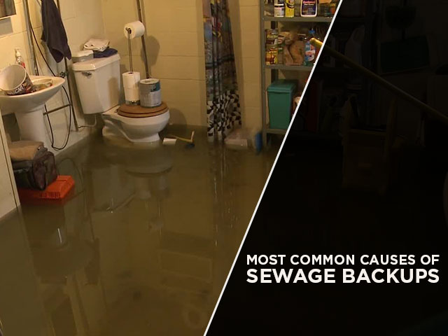 Most Common Causes of Sewage Backups