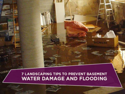 7 Landscaping Tips To Prevent Basement Water Damage And Flooding