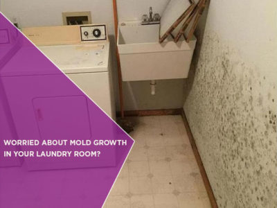 Worried About Mold Growth In Your Laundry Room?