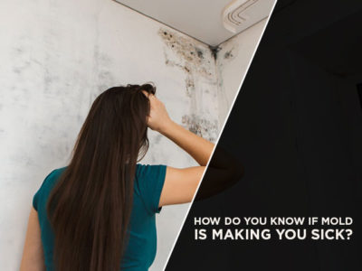 How Do You Know If Mold Is Making You Sick?