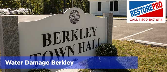 Water Damage Berkley