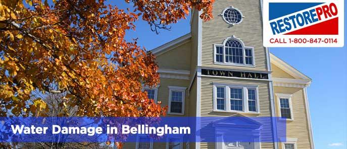 Water Damage in Bellingham