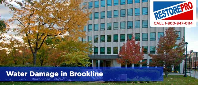 Water Damage in Brookline