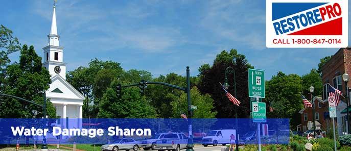 Water Damage Sharon