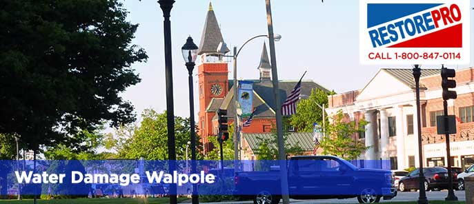 Water Damage Walpole