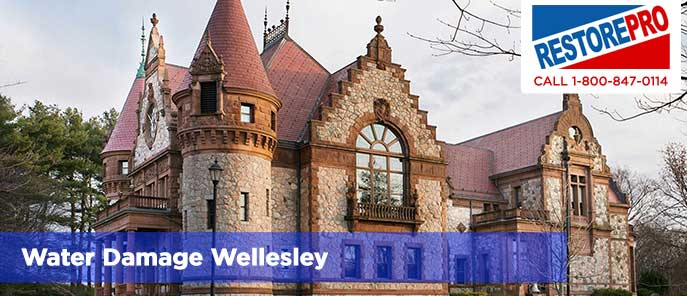 Water Damage Wellesley