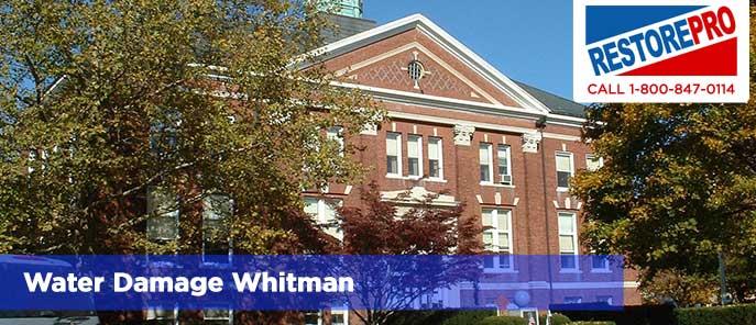 Water Damage Whitman