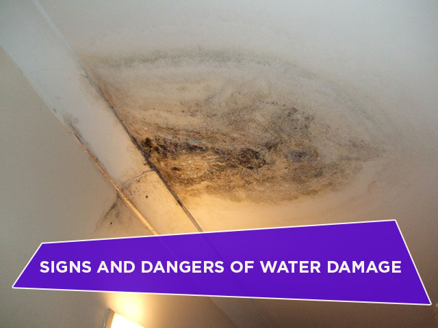 Signs and Dangers of Water Damage