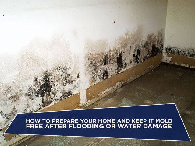 How to Prepare Your Home and Keep It Mold Free AFTER Flooding or Water Damage