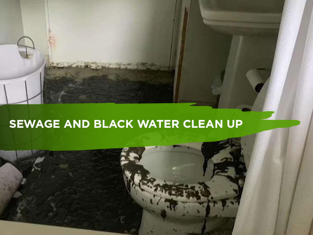 Sewage-and-Black-Water-Clean-Up