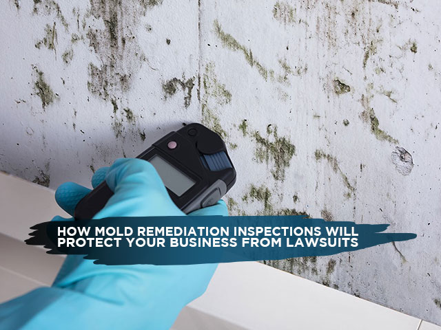 How Mold Remediation Inspections Will Protect Your Business From Lawsuits
